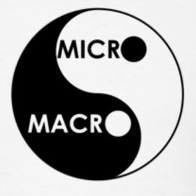 micro vs macro