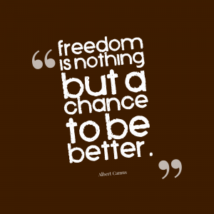 freedom-is-nothing-but-a-chance-to-be-better