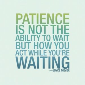 Patience  1